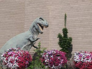 Pink Flowers in Front of a T-Rex Statue